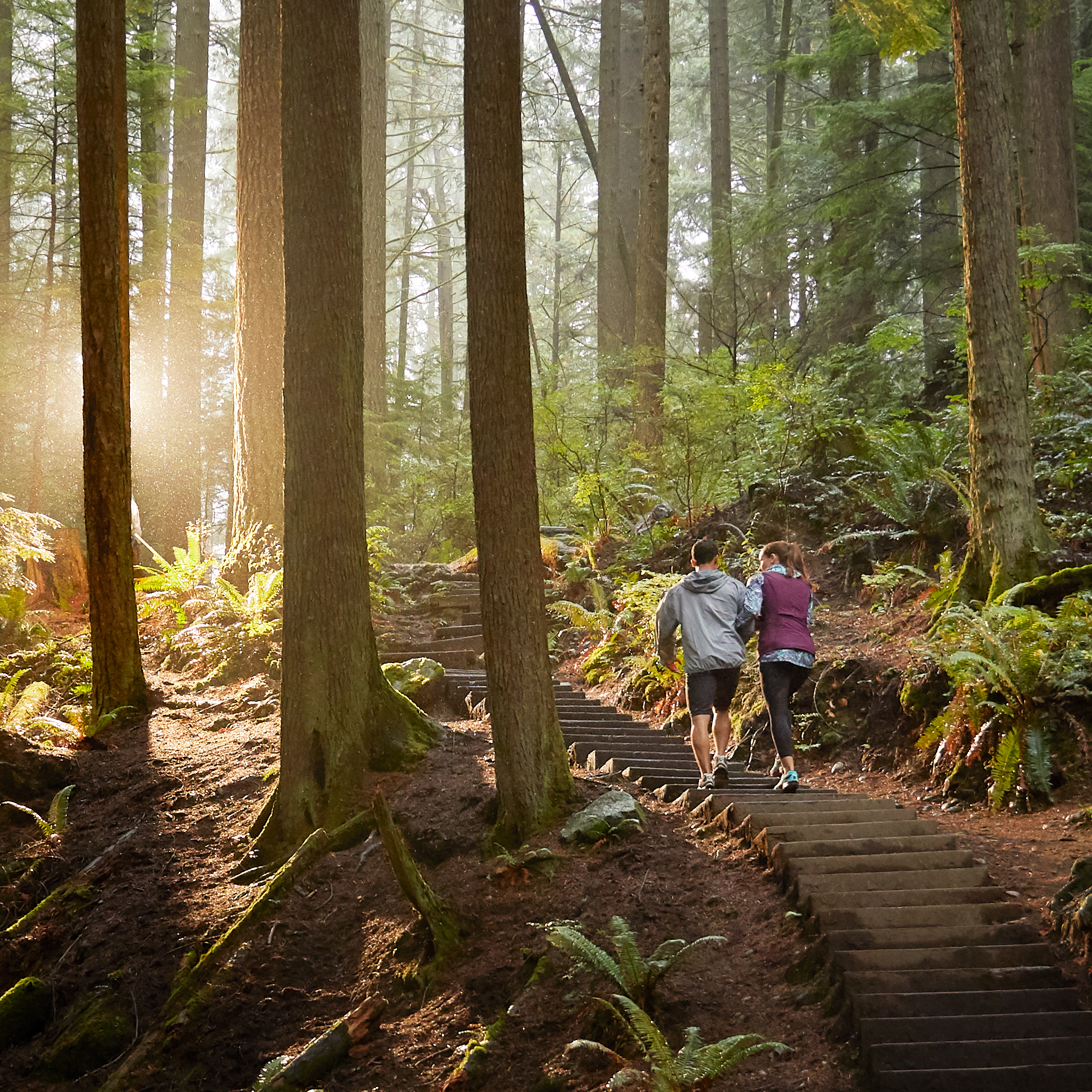 Tourism Vancouver –Find Your Way
