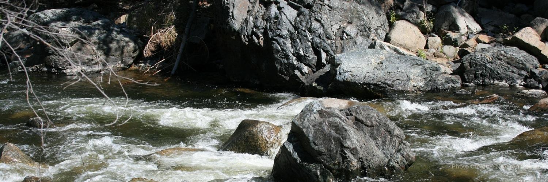 5 The River.jpg