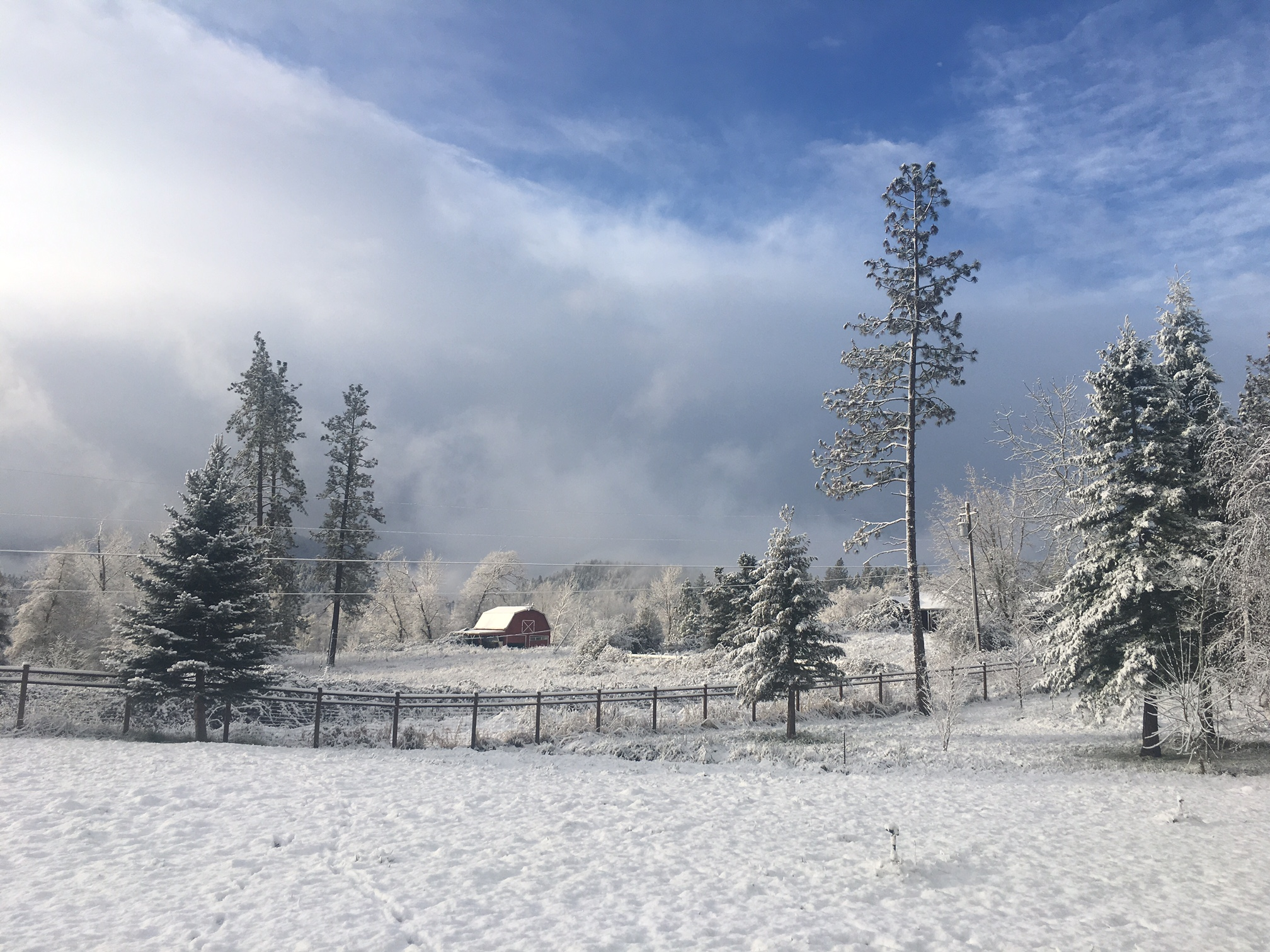 Winter at The Farm 2017