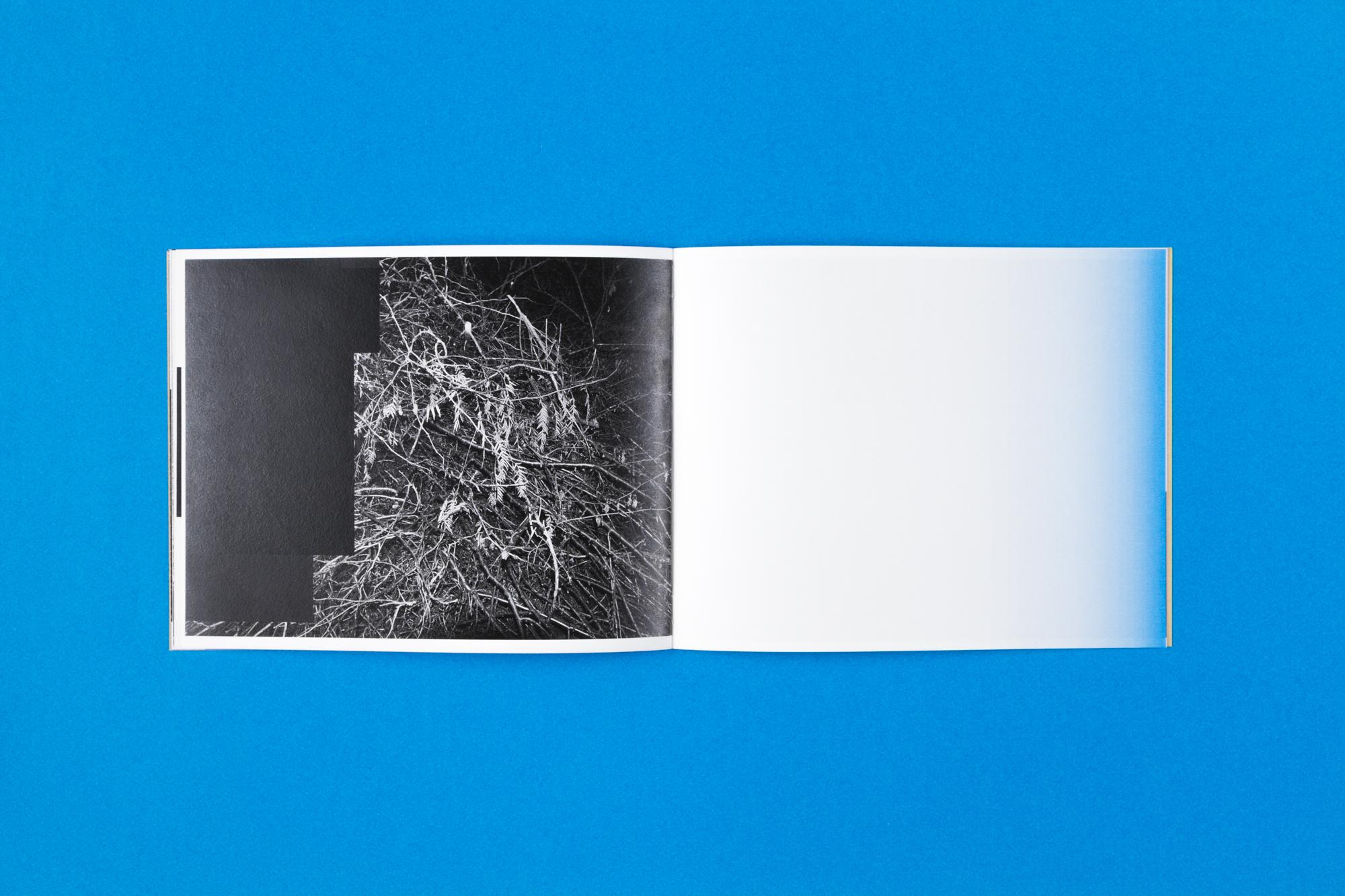 fragmented sights-3.jpg