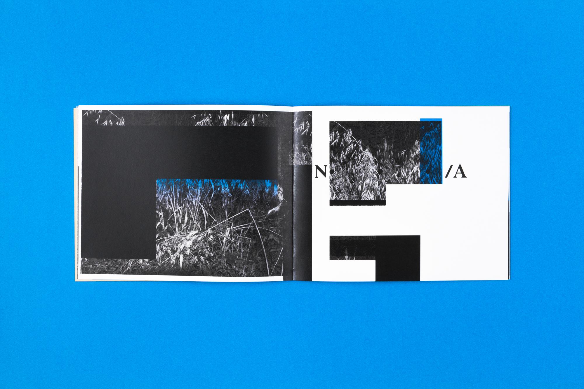 fragmented sights-7.jpg
