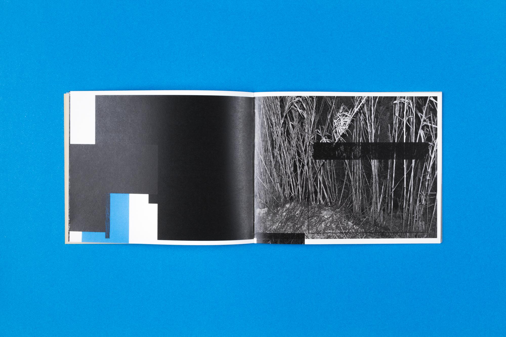 fragmented sights-8.jpg