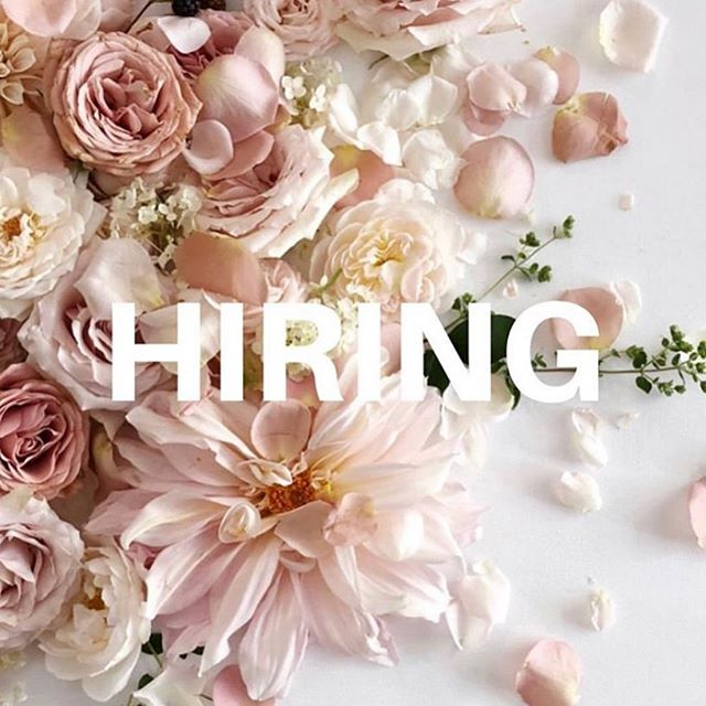 We are hiring for a full time position which includes some Saturdays. A few of the qualities we are looking for are: Artistic talent is a plus. The ability to jump into stressful situations and react with calm professional grace and immediately knowing what to do.  Please email your resume to anitasflowersandboutique@gmail.com For more information call 304.472.8527