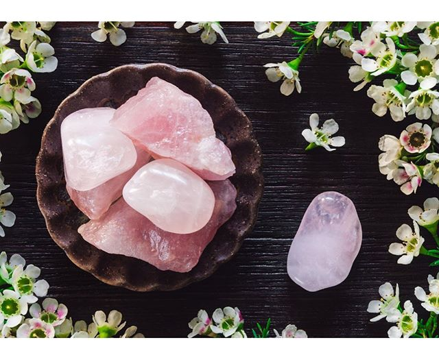 We now carry a select variety of crystals. The perfect addition to terrariums or planters or to use alone for their amazing healing properties.