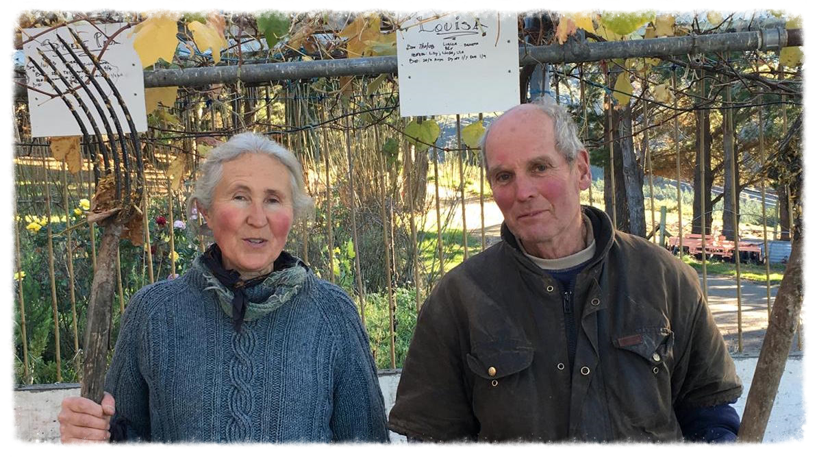 Merrall and Alex MacNeille of The Holy Cow farm. Photo by Tess Trotter.