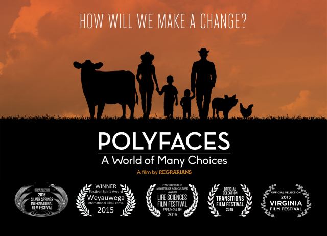 Image:   Polyfaces, purchase film  here .