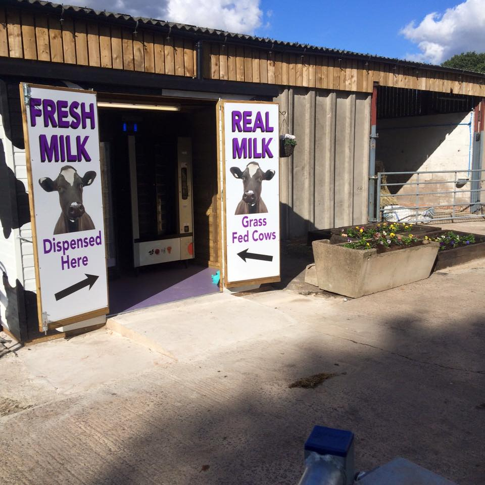Image:   the milk shack