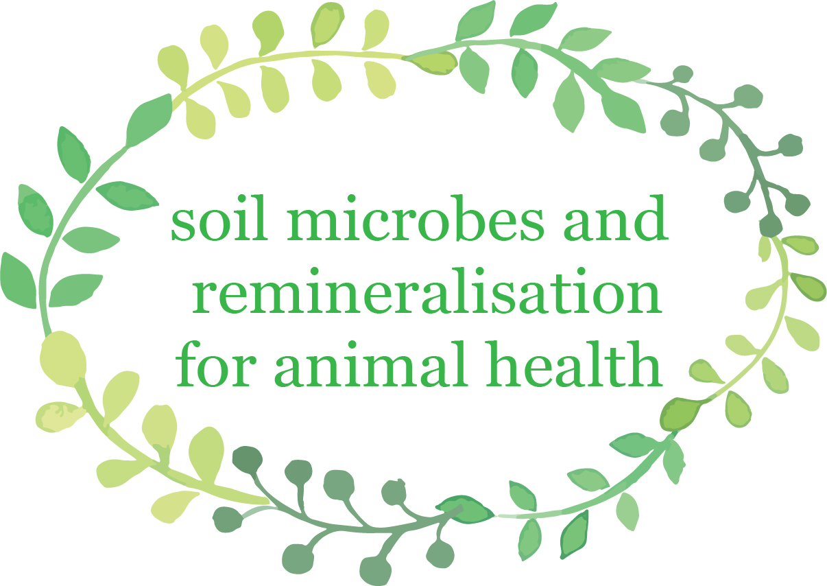 Soil microbes and remineralisation2.jpg