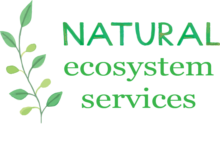 natural ecosystem services2.jpg
