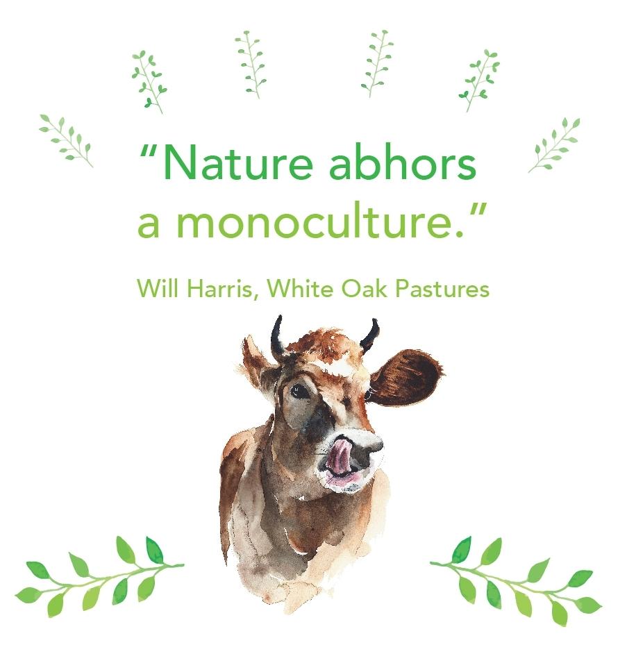 Nature abhors a monoculture.jpg