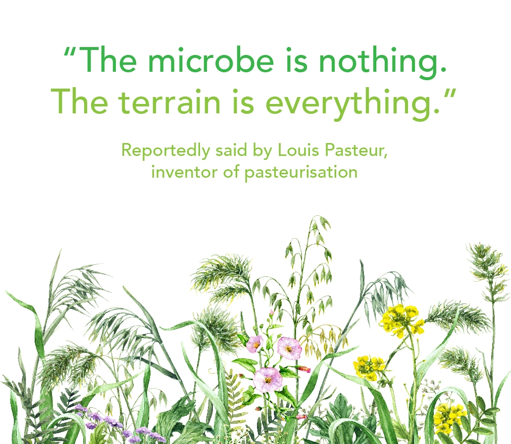 The Microbe is nothing, the terrain is everything