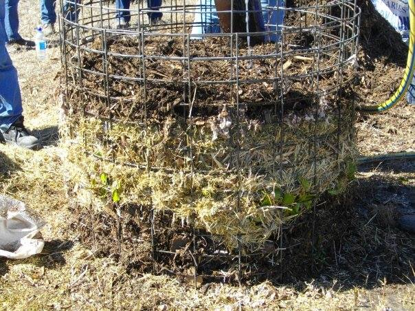 Image:   A compost heap, click to enlarge images.