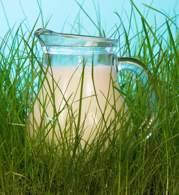 grass-fed raw milk melbourne