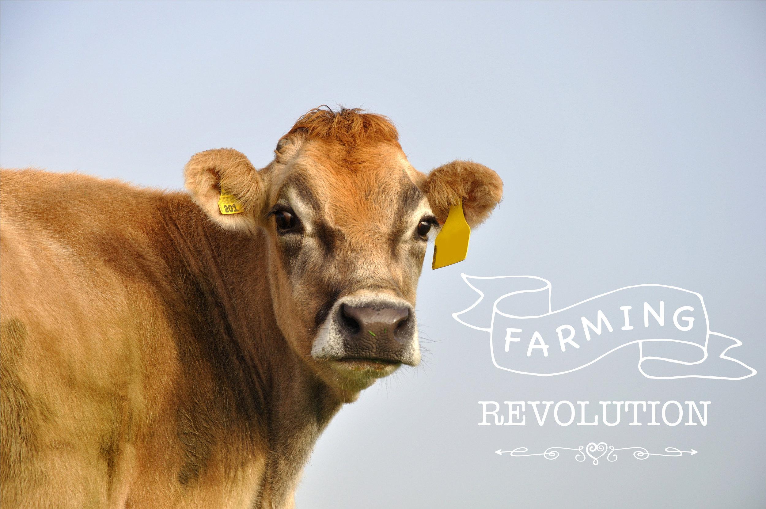 Farming Revolution.jpg