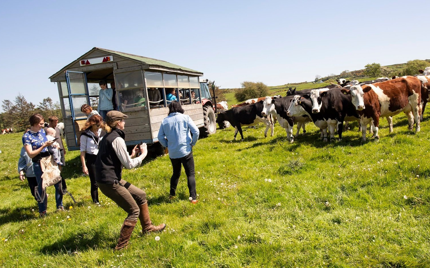 Image: There were also multiple farm tours. See more photos  in the gallery .