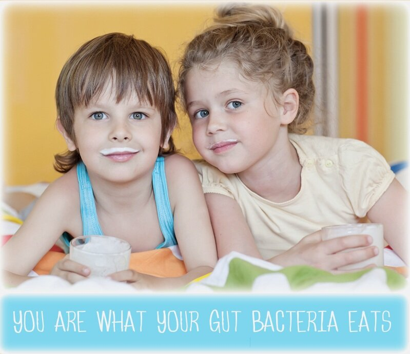 raw+milk+gut+bacteria