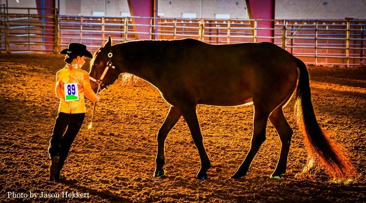 Dancing+With+Horses+copy.jpg