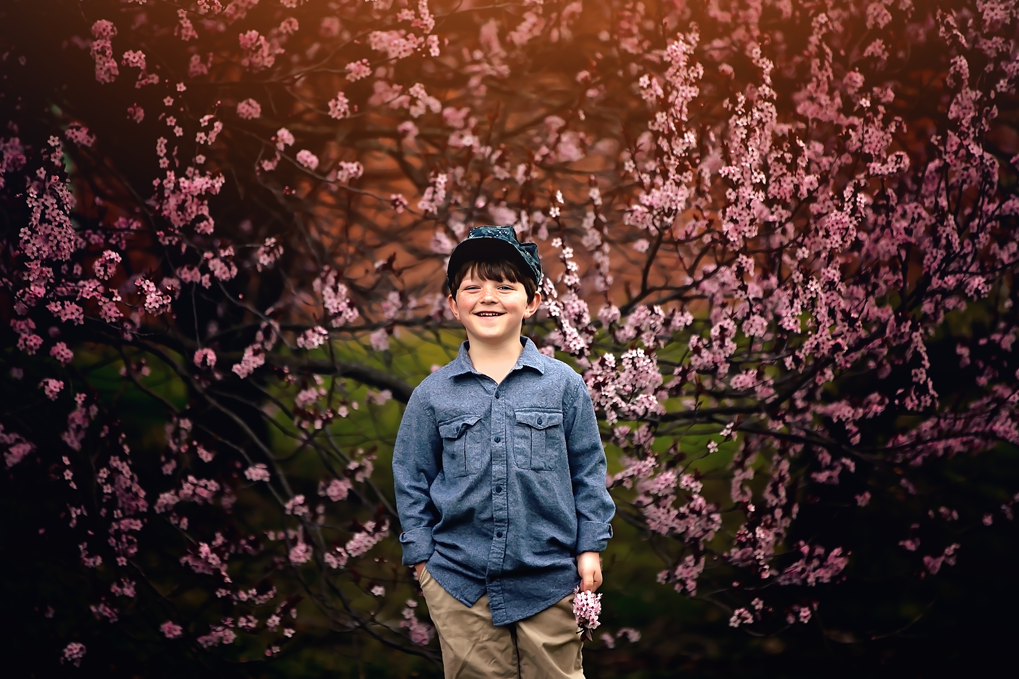 Buddy Cherry Blossom Trees facebook.png