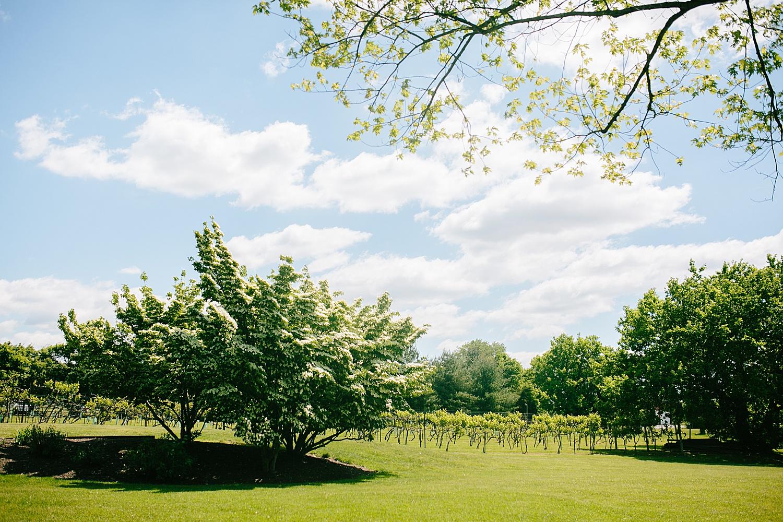 emilyaustin_rosebank_winery_newhope_farm_wedding_image003.jpg