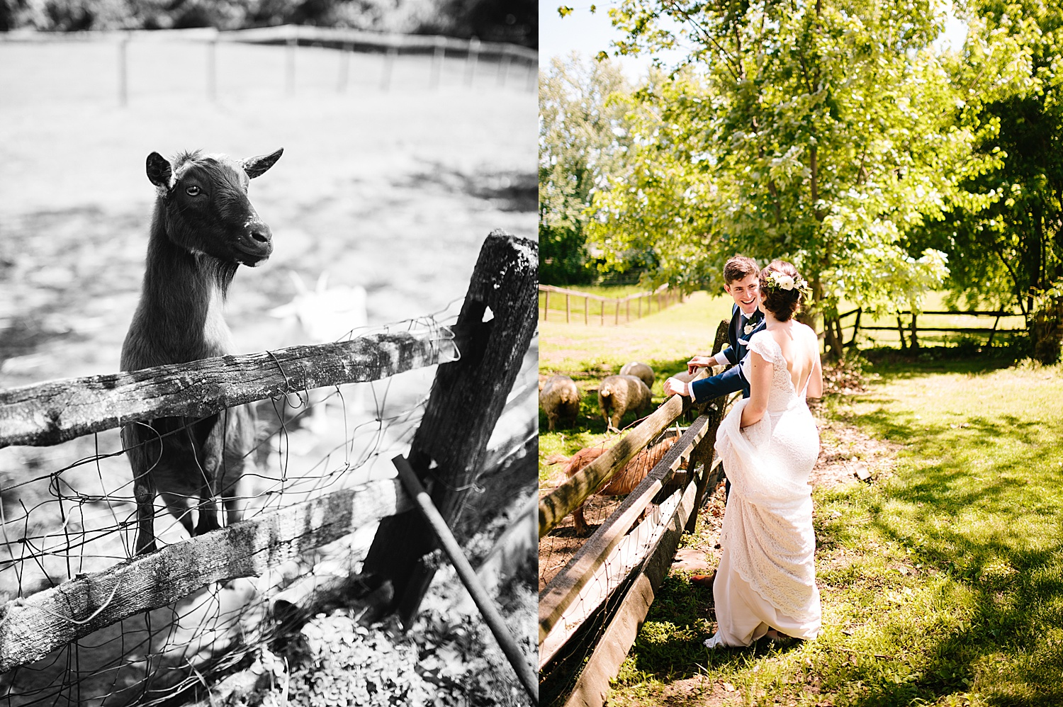 emilyaustin_rosebank_winery_newhope_farm_wedding_image043.jpg