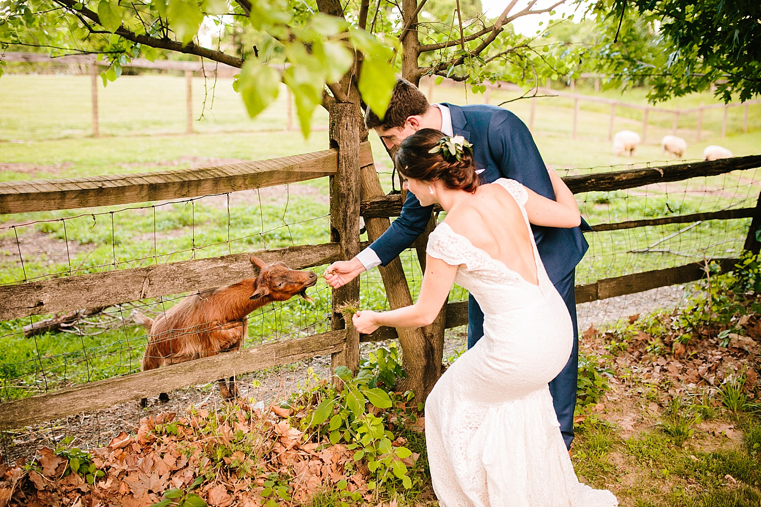 emilyaustin_rosebank_winery_newhope_farm_wedding_image119.jpg
