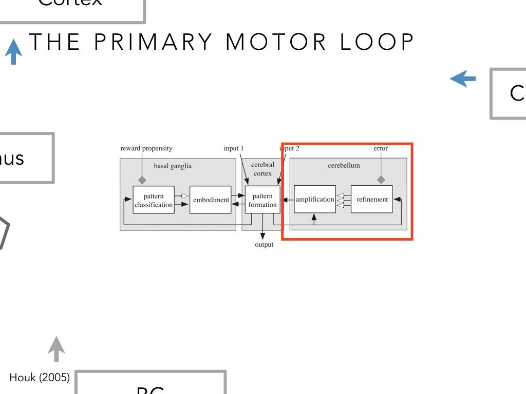 BIO222-GSI-Matt_CNS-Aspects-of-Motor-Control-II.038.jpeg