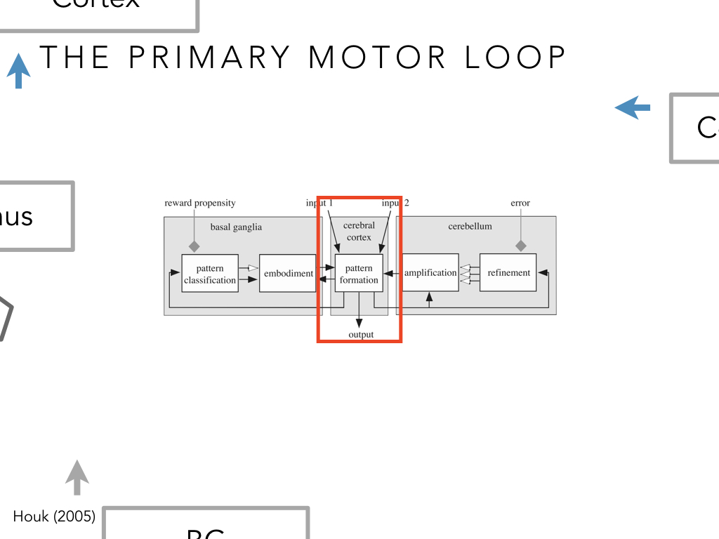 BIO222-GSI-Matt_CNS-Aspects-of-Motor-Control-II.047.jpeg