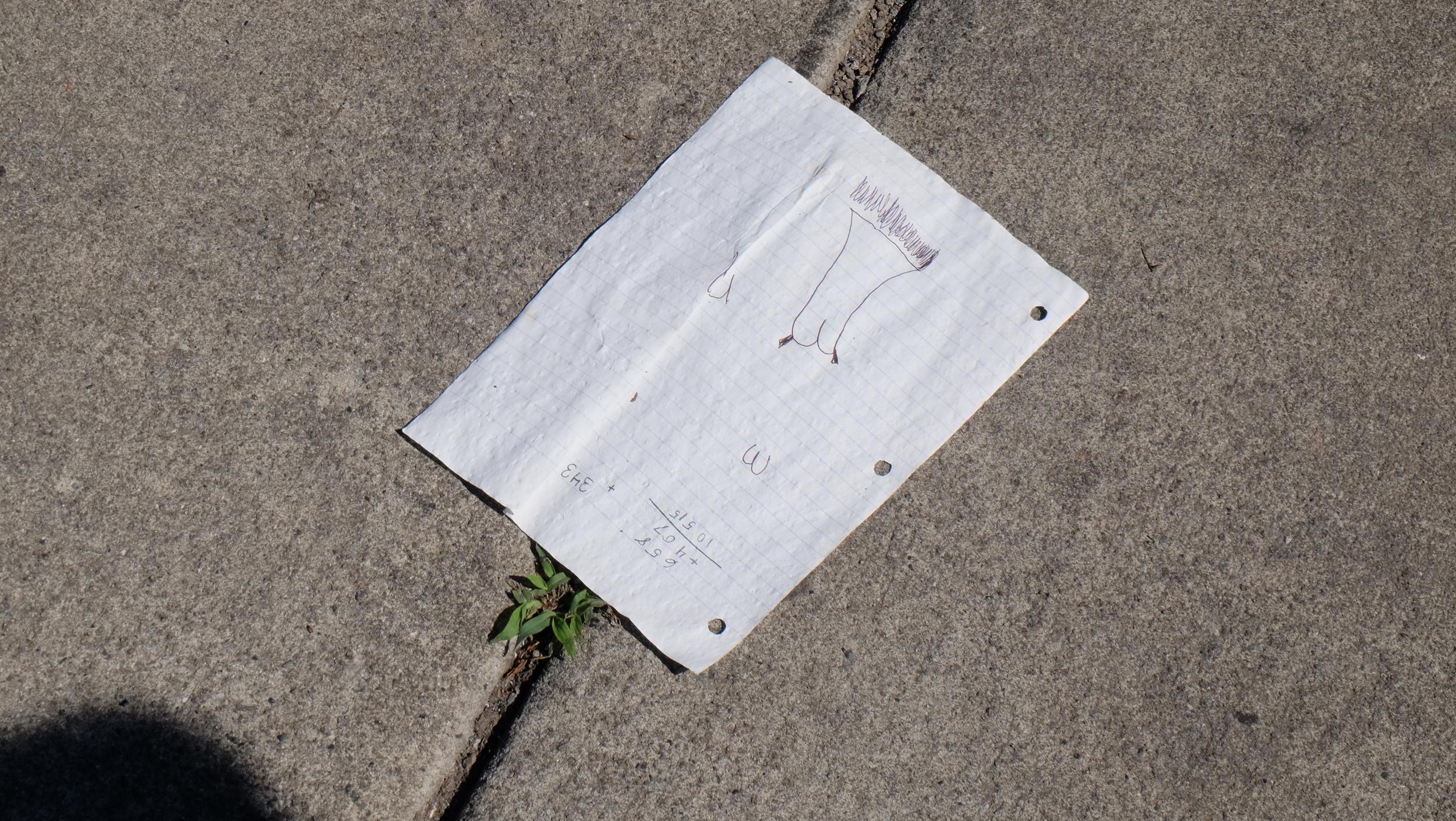 The Strangeness of Litter