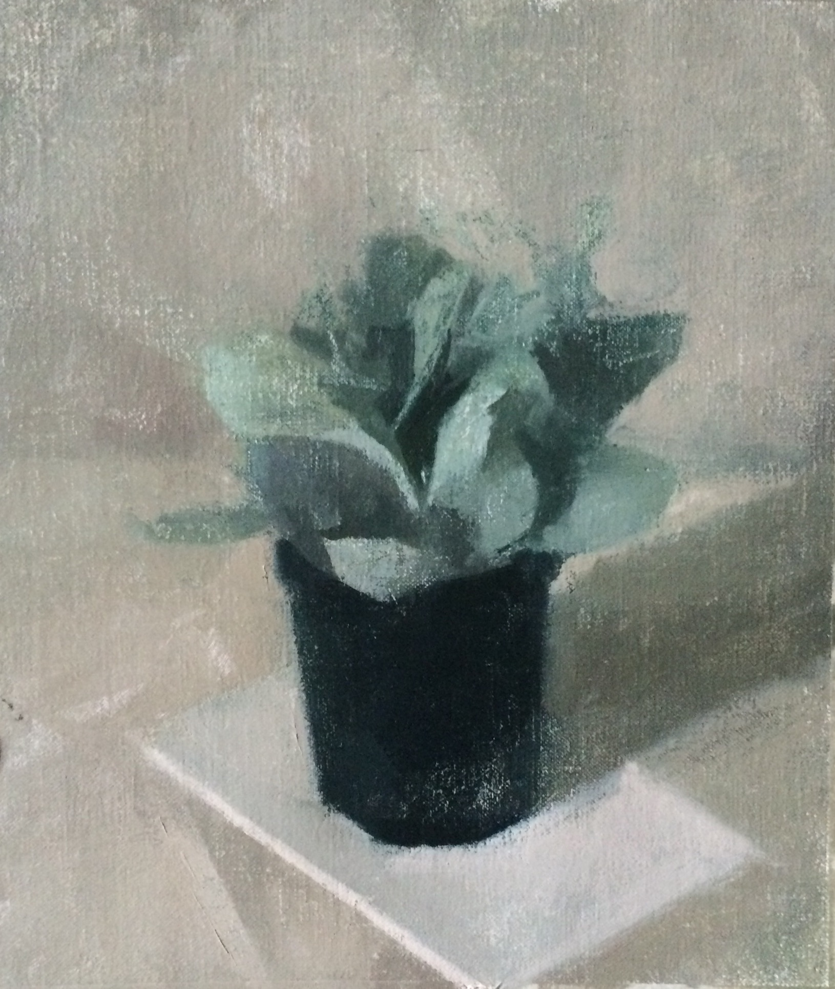 """Little Succulent"" 8"" x 10"" oil on linen mounted on board"