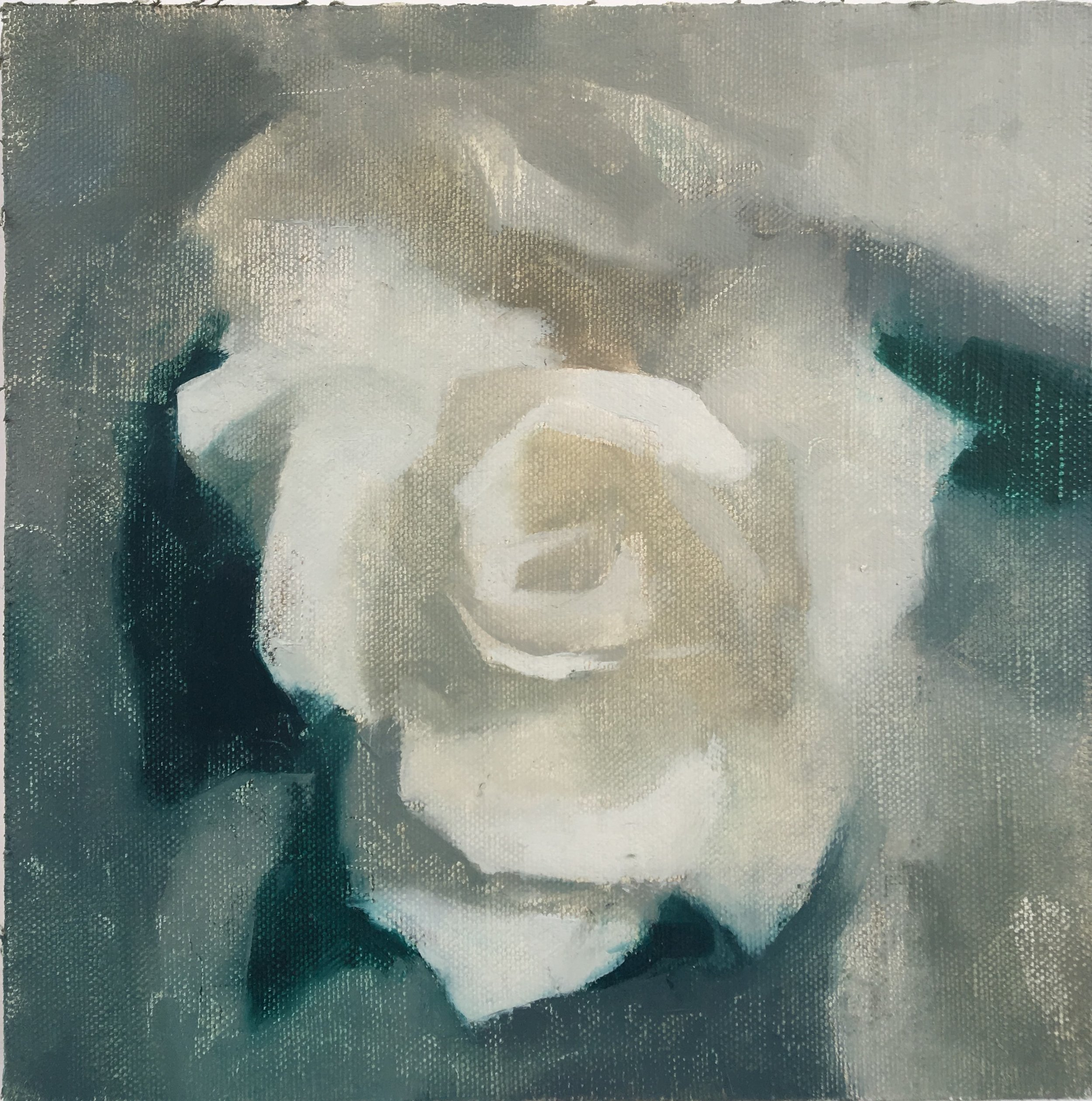 """Rose in Water"" 8"" x 8"" oil on canvas mounted on board"