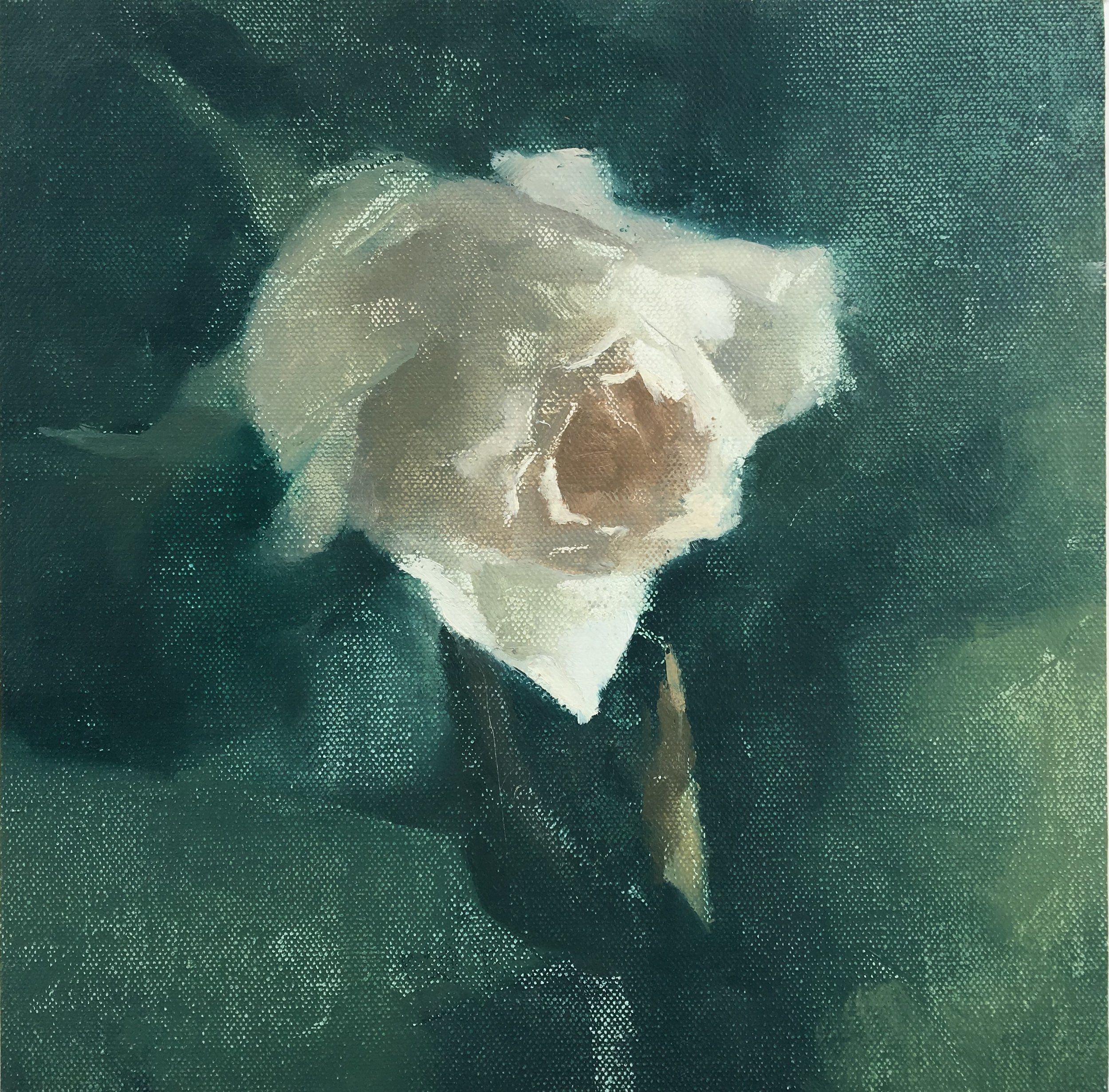 """White Rose"" 8"" x 8"" oil on canvas, private collection"