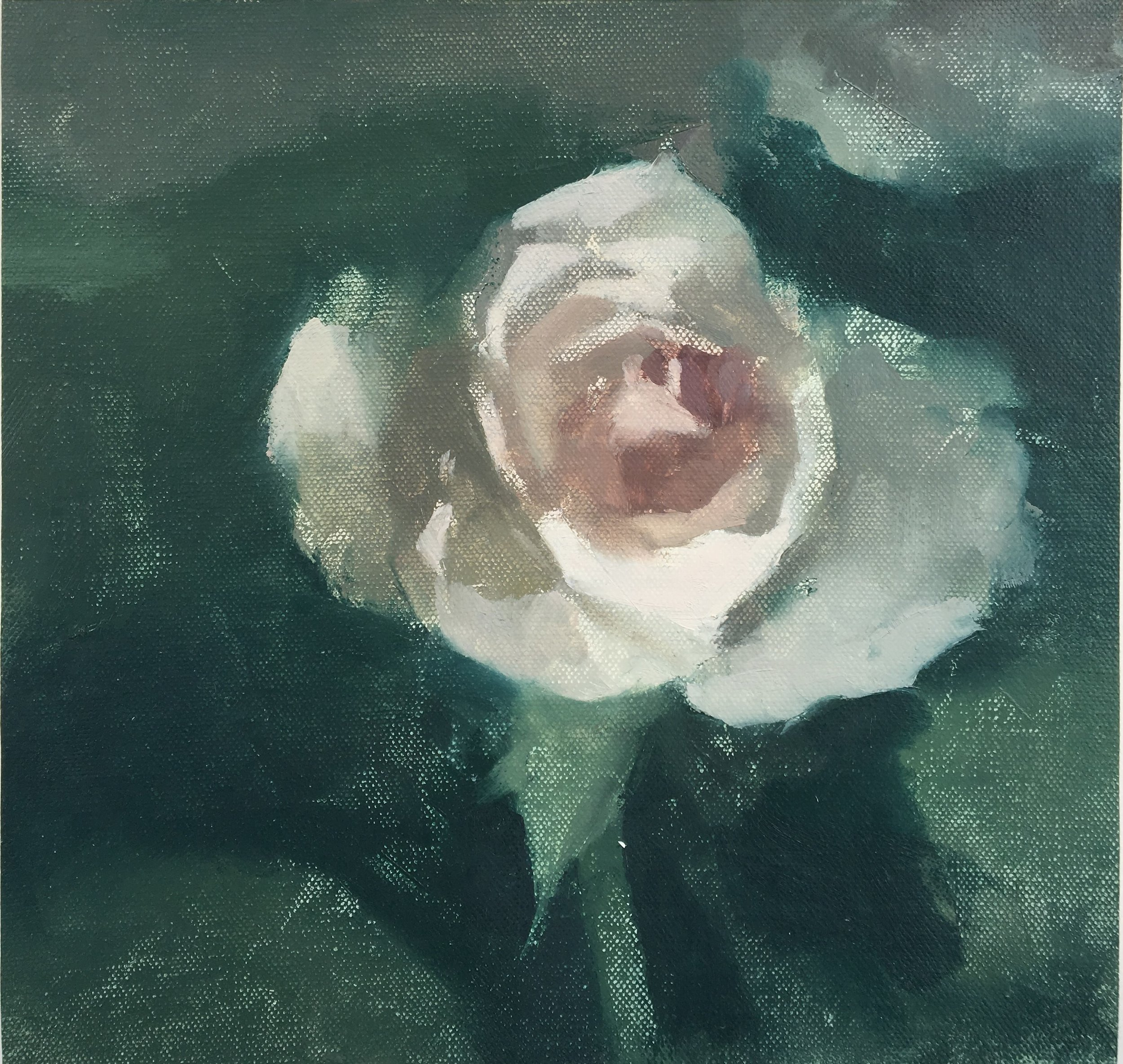"""Rose"" 8"" x 10"" oil on canvas mounted on board"