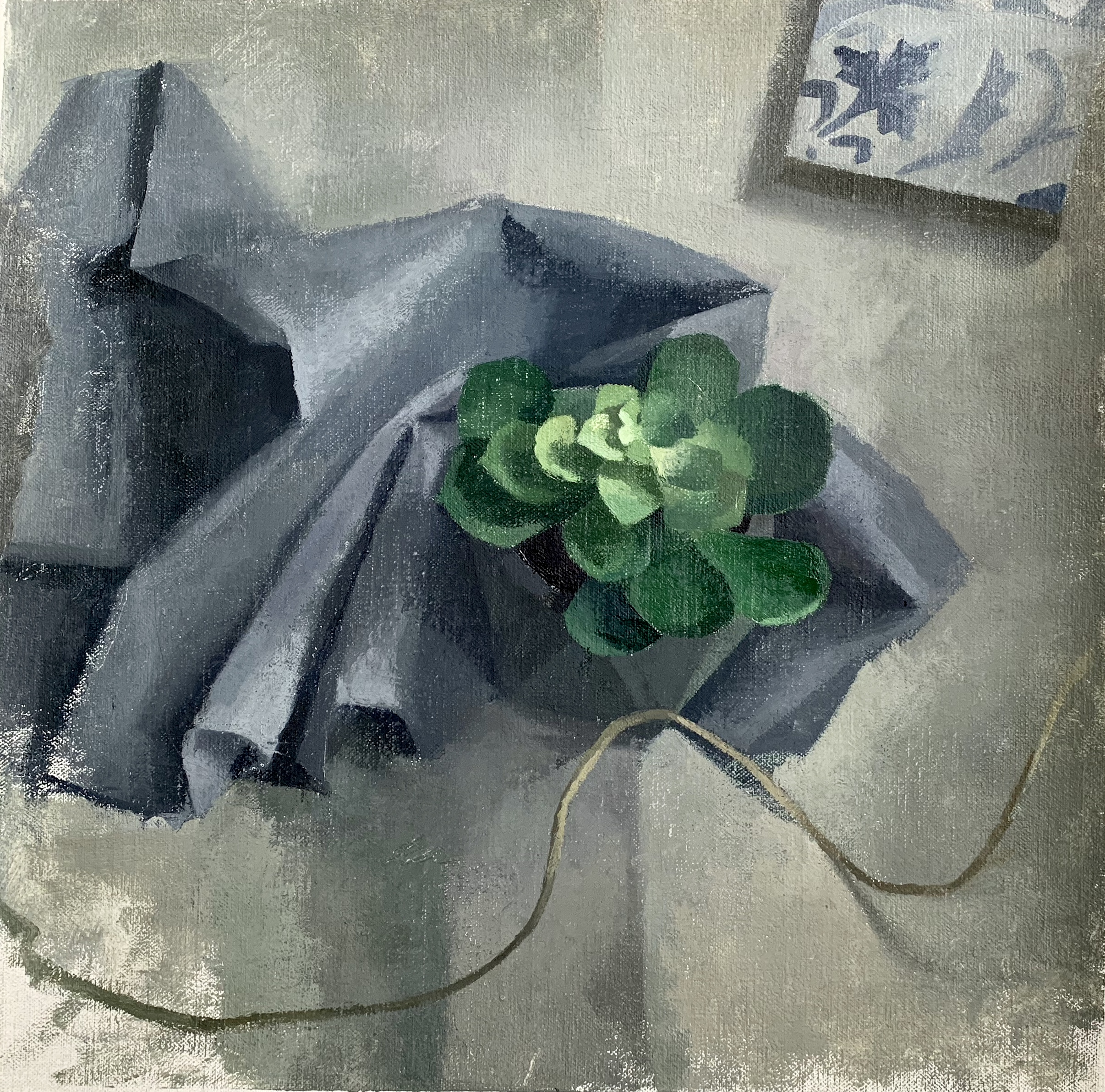 """Succulent In Blue"" 14"" x 14"" oil on linen mounted on board"
