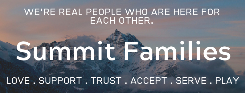800 x 400 Summit Families2 For Website.png