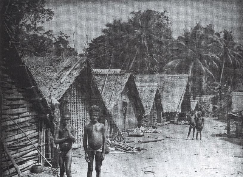 Village in Vanuatu in the early 20th C