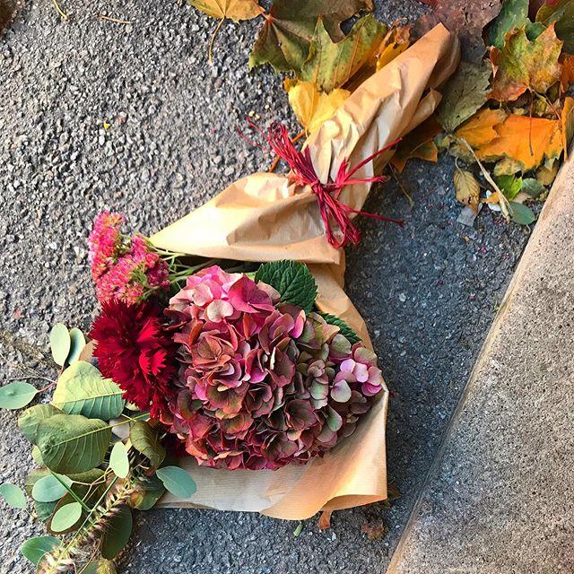 Inte alltid man hinner förbi lokala blomsterbutiken. Nu kan du få gratis hemleverans inom hägersten hos @tellusblommor. Du prenumererar veckovis eller varannan vecka. Buketten kostar alltid 295 kr/gång inga andra avgifter tillkommer. Maila info@tellusblommor.se för mer info.