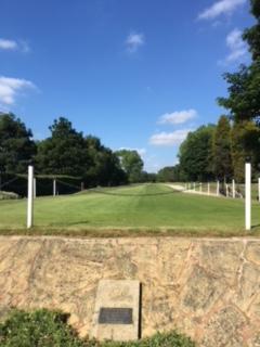 golf1.jpeg