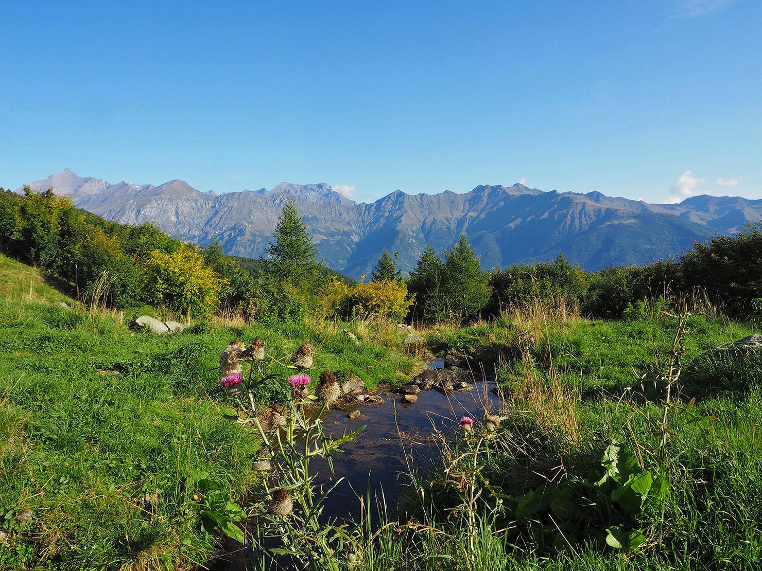 P9041139-sullo-sfondo-a-sx-il-Rocciamelone---icona-di-Torino---nostra-ultima-meta.jpg