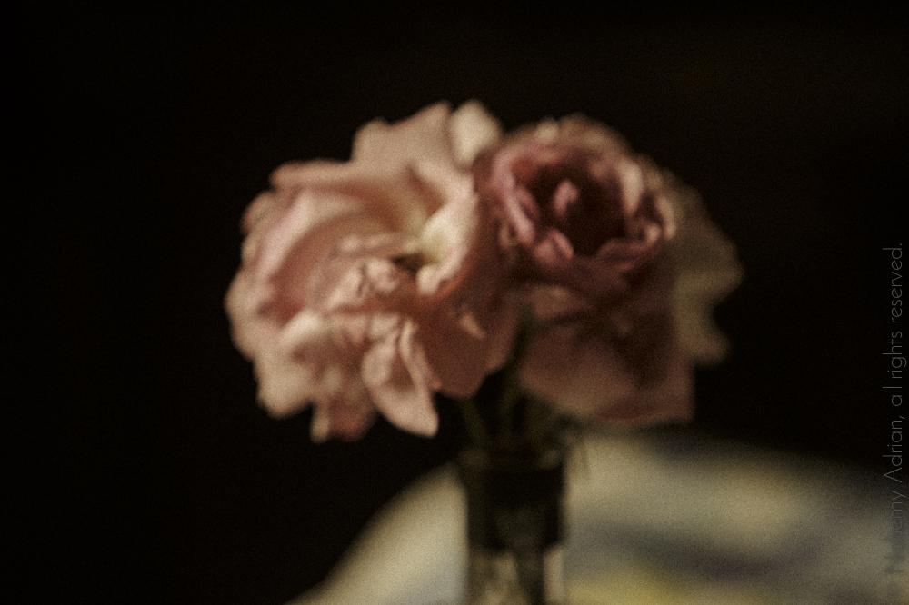 flowersantique-1.jpg
