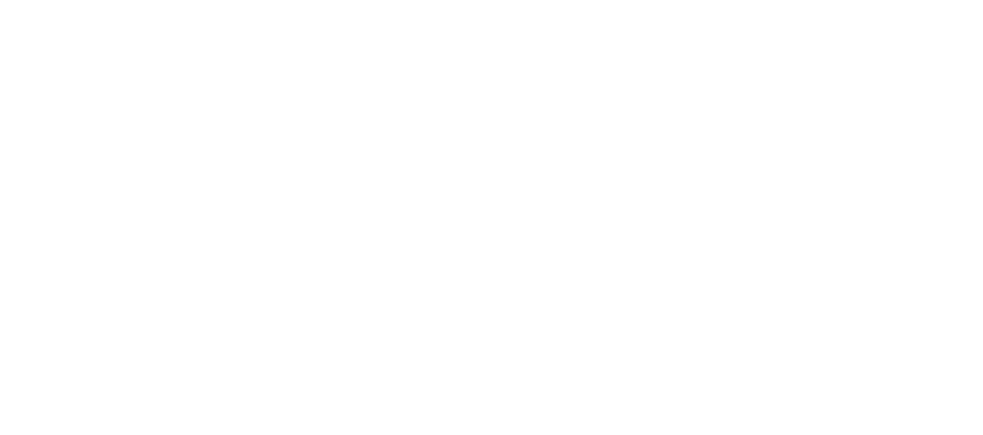Mike Valdes & The Noise-logo-white.png