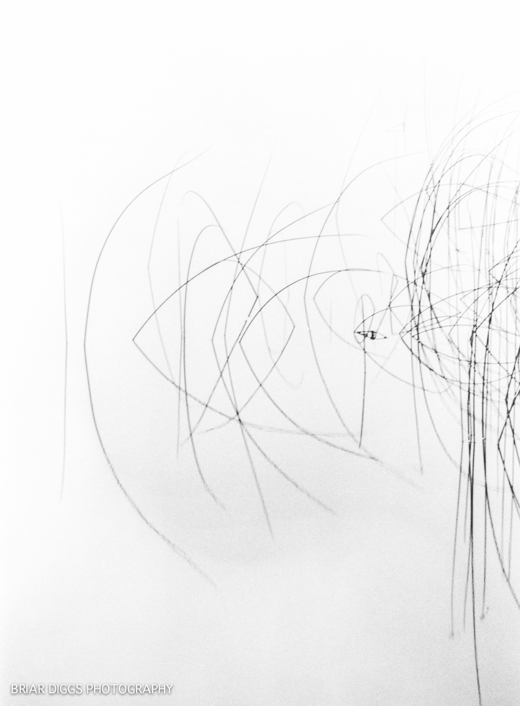 B&W FINE ART IMAGES-23.jpg