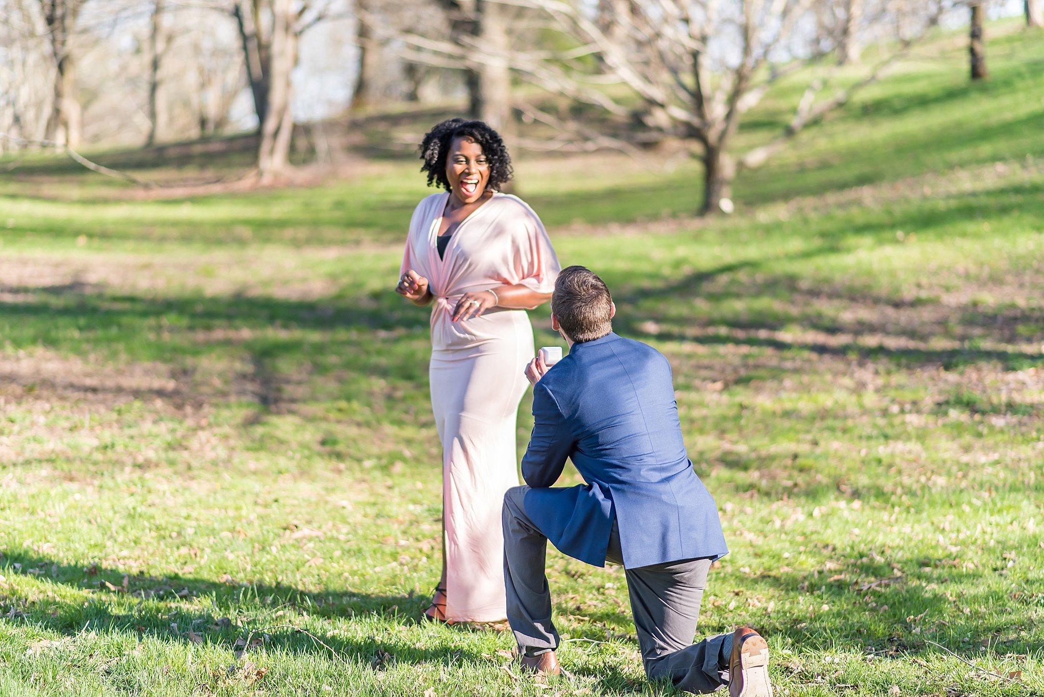Boston Surprise proposal