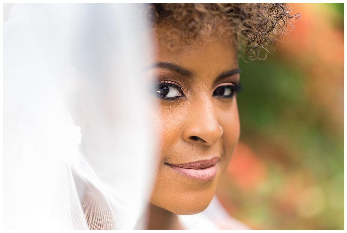 Bridal portrait at Arnold Arboretum.jpg