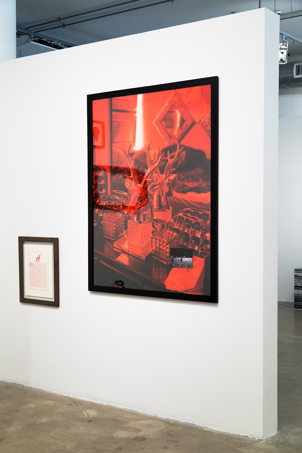 Red Room | Black Views, 2016 (installation View)