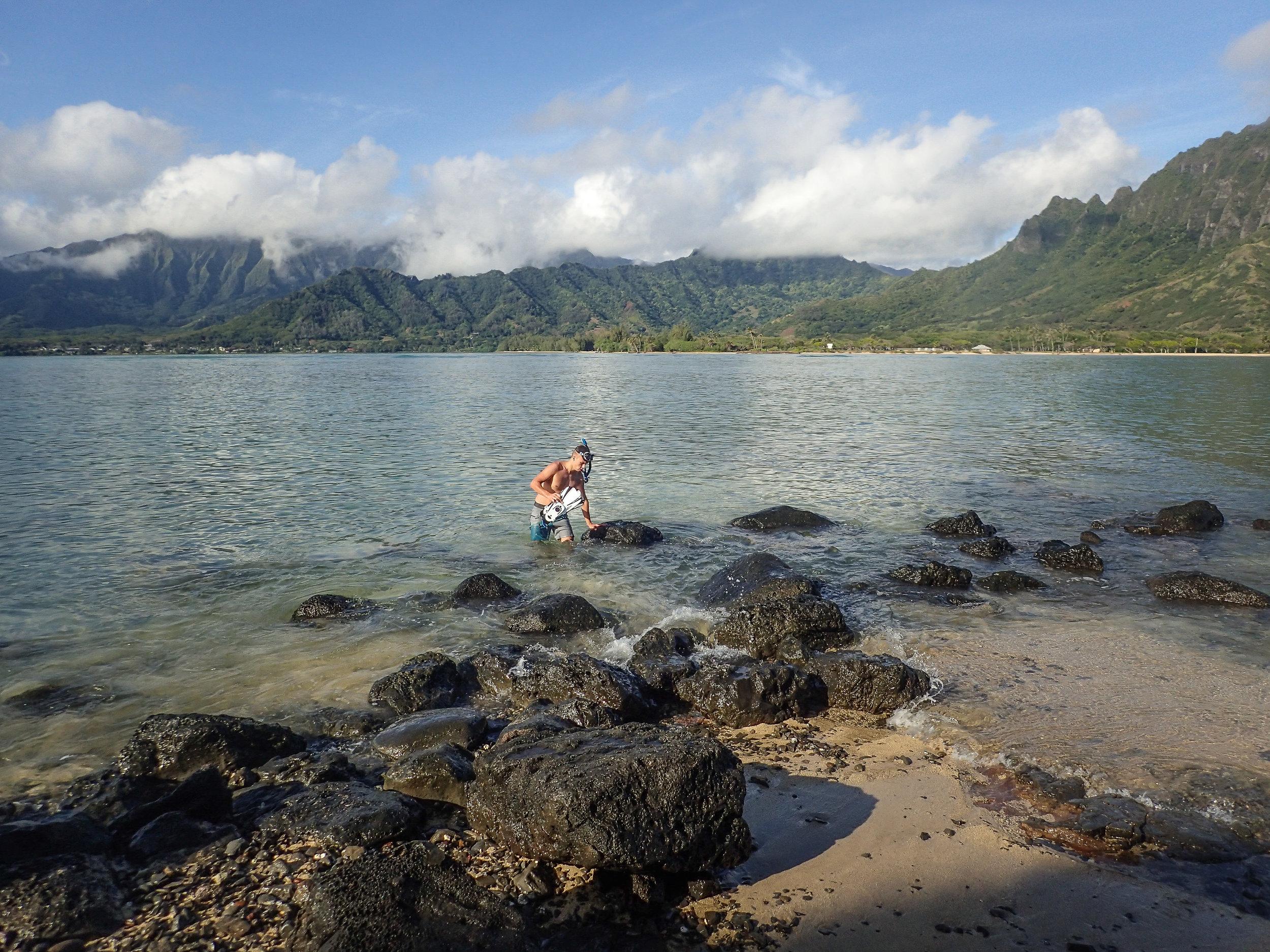 P_Tr_HI_Oahu_Olympus Images-235.jpg
