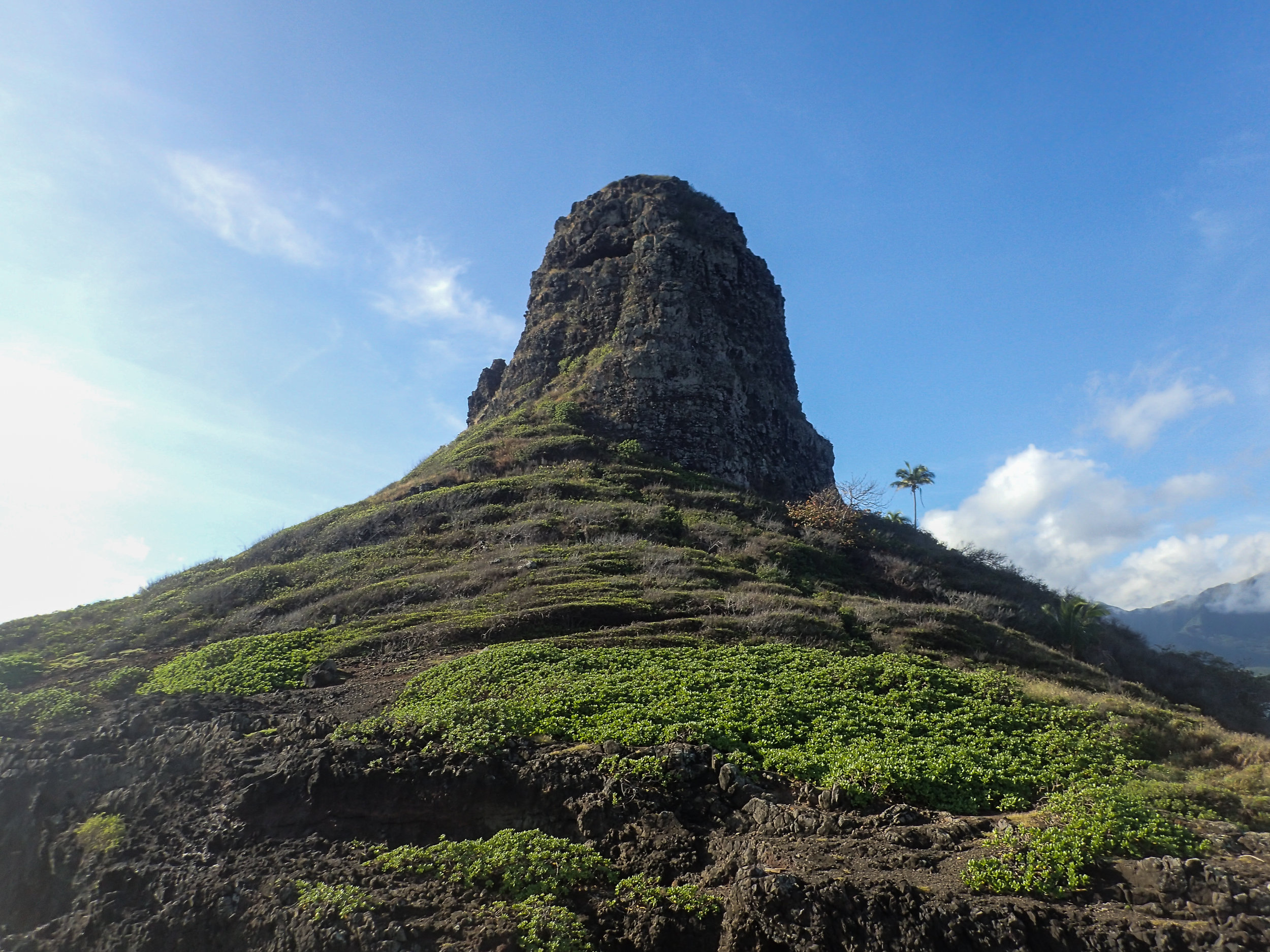P_Tr_HI_Oahu_Olympus Images-249.jpg