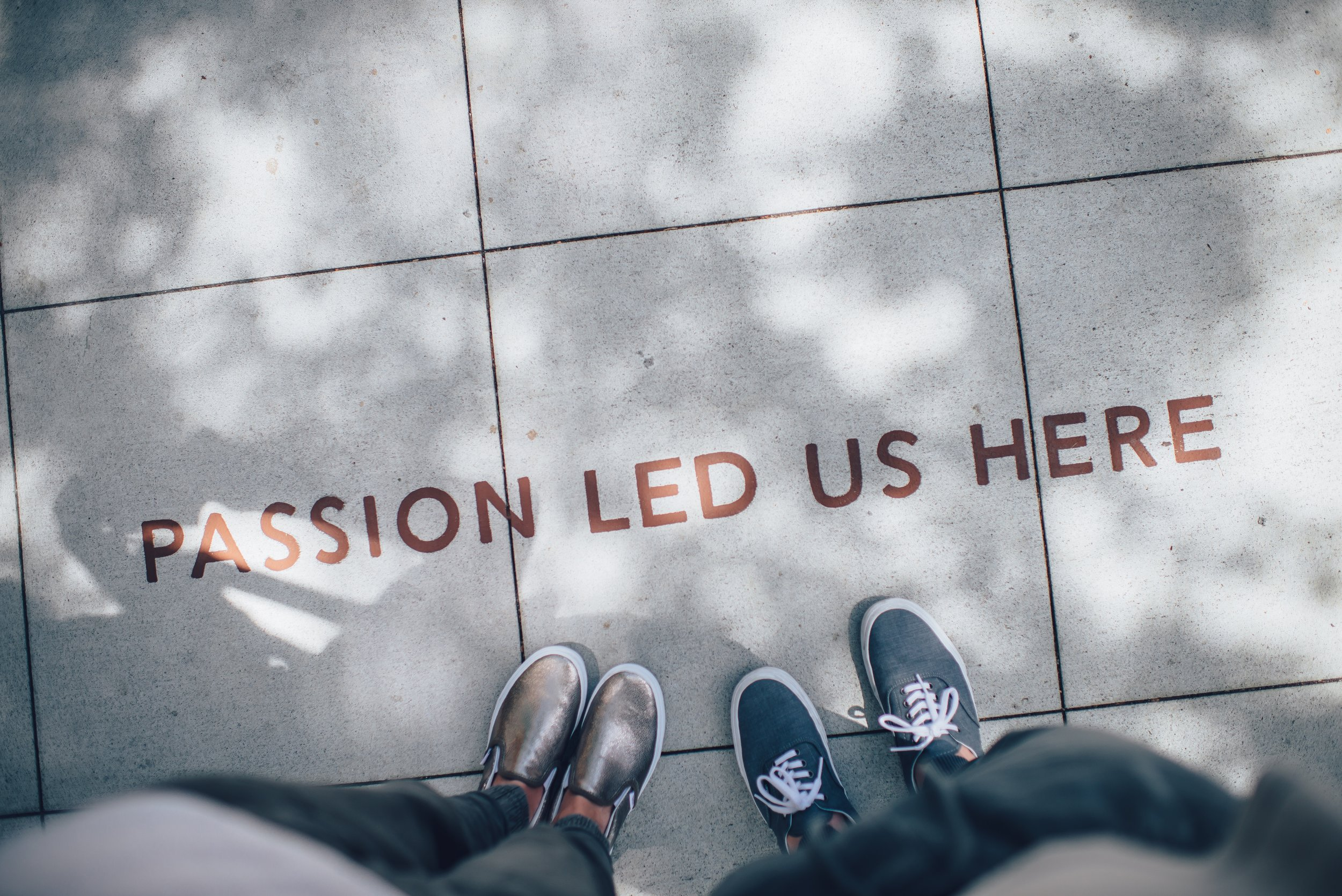 """""""Passion led us here"""" image"""
