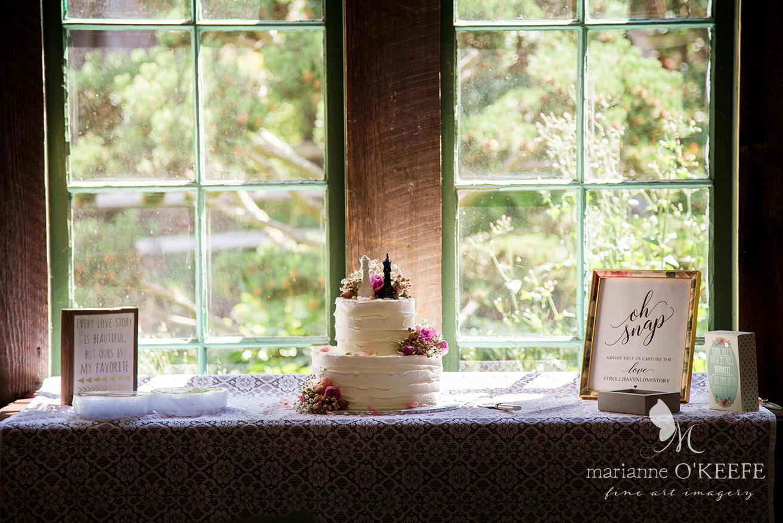 A&ZWedding228_cake_web.jpg