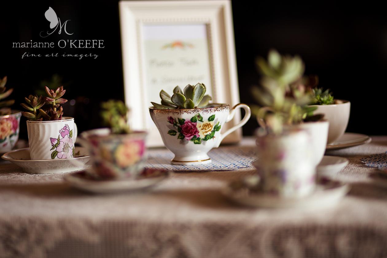 Annie'sShower15_succulents_web.jpg