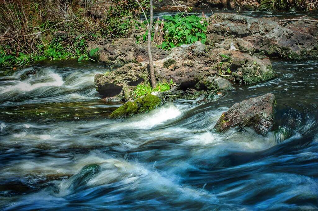 Hillsborough River 2/27/2016